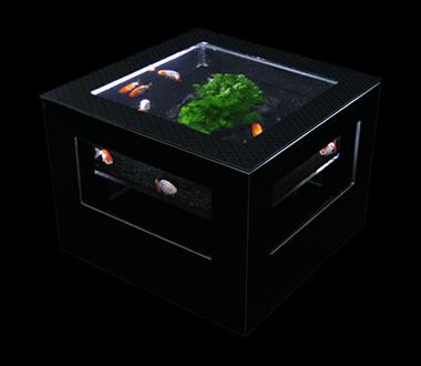バーズアイ 水槽 テーブル レクタングラ ブラック BEA-SQU-0606-B