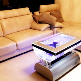 一般家庭 テーブル インテリア 癒し バーズアイ水槽